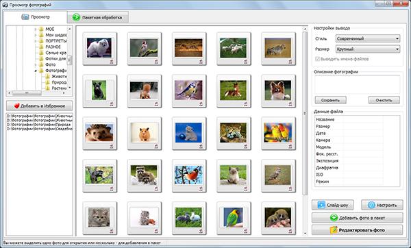 Программа Фотостудия На Русском Языке Скачать Бесплатно - фото 5