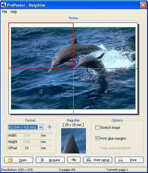 Программа ProPoster предназначена для распечатки плакатов стандартного
