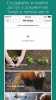 Microsoft Sway (iPhone/iPad)